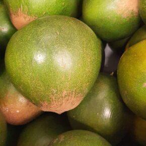 Früchte La Piuranita